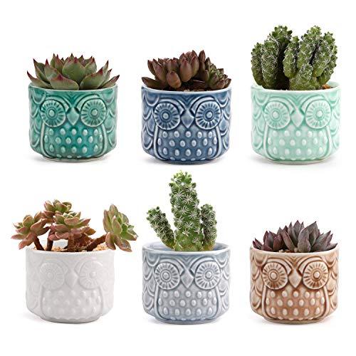 KGCA Hibou en Céramique Succulentes Cactus Plant Pot Set Ensemble De 6 Couleurs, Home Office Decor Bureau Windowsill Mariage Bonsai Pots Cadeau