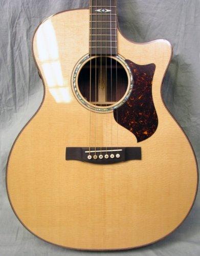 Martin gpcpa de 1Grand performanace eléctrico de guitarra acústica con maletín (375),...