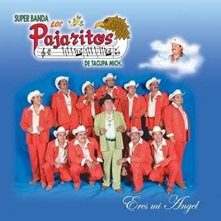 Eres Mi Angel by Los Pajaritos De Tacupa Michoacan (2007-07-31)