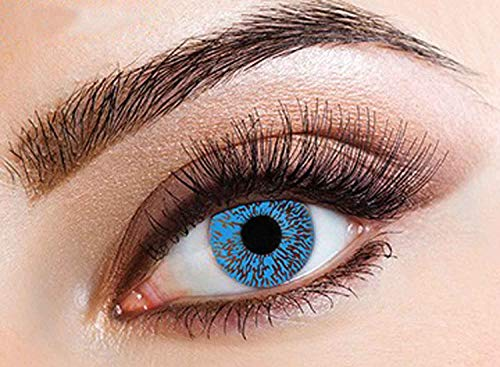 Blue 1 Tone Eye Accessories for Make Up