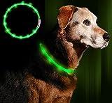 Anicoll LED Leuchthalsband Hunde Halsband grün USB wiederaufladbar - Längenverstellbarer Haustier Sicherheit Kragen für Hunde und Katzen- 3 Modus 12 Lichte