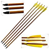 FengYang Carbon Arrows 29 Inch 340 Spine 60-70 lbs Hunting Archery for Recurve Bows 6 Pack