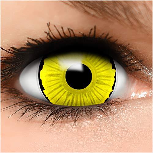 Farbige Mini Sclera Kontaktlinsen Lenses Avatar inkl. Behälter - Top Linsenfinder Markenqualität, 1Paar (2 Stück)