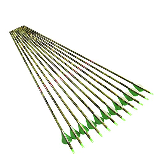 Linkboy Archery Spine 400 Carbon Arrows for Compound Recurve Long Bows Adult Hunting Practice 30 Inch Arrow Pack of 12PCS