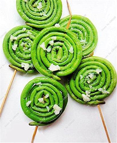 Promotion! Bean long Vigna Unguiculata Graine, Bonsai Plante en pot de fruits et de légumes rares semences jardin Easy Grow 10 pièces/sac
