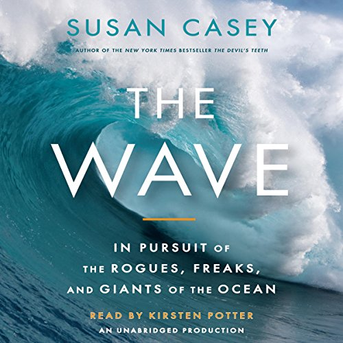 The Wave audiobook cover art