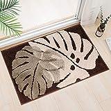 Best Indoor Mats - Indoor Door Mat,Super Absorbent Mud and Water Entrance Review