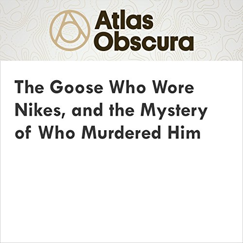 The Goose Who Wore Nikes, and the Mystery of Who Murdered Him audiobook cover art