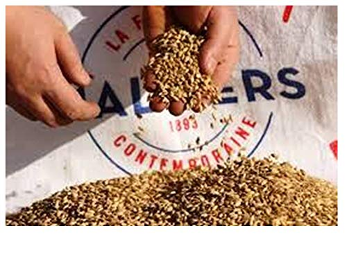 Malta PILS BOORTMALT 4.5kg