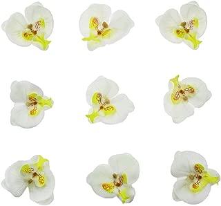 Best silk flower hair clips diy Reviews