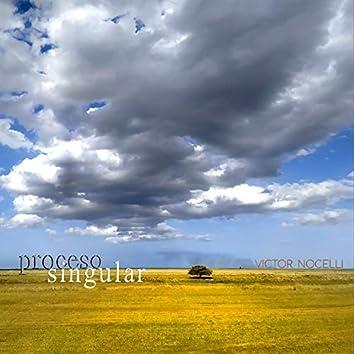 Proceso Singular