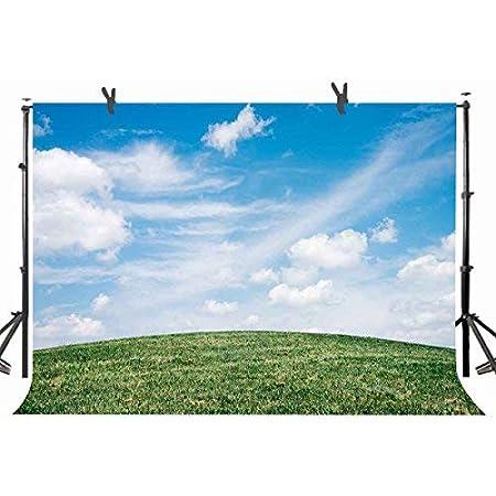 CdHBH 10 x 7 FT Polyester Roman Landscape Photography Backdrop Rob Man Village Studio Background Props Wall 107-286