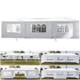 Teekland 10'x30' Outdoor Canopy Party Wedding Tent,Sunshade Shelter,Outdoor Gazebo Pavilion with 8 Removable Sidewalls Upgraded Thicken Steel Tube (10' x 30' / 8 Removable Sidewalls-1)