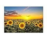 Paul Sinus Art 120x80cm - WANDBILD Sonnenblumen