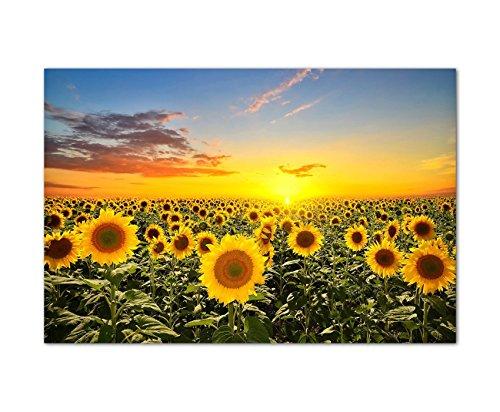 Paul Sinus Art 120x80cm - WANDBILD Sonnenblumen Sonnenuntergang Himmel - Leinwandbild auf Keilrahmen modern stilvoll - Bilder und Dekoration