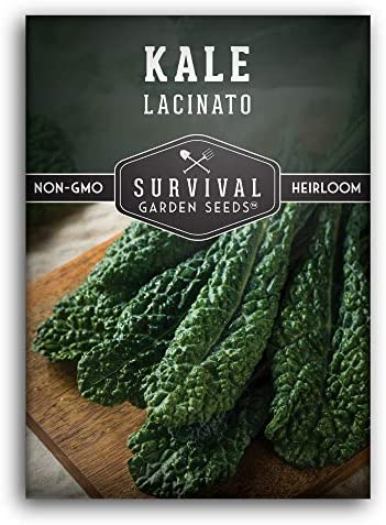 Survival Garden Seeds Lacinato Kale Seed for Planting Packet with Instructions to Plant and product image