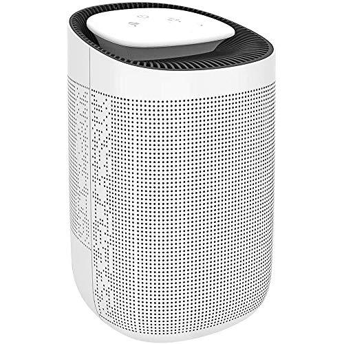 Deshumidificador 1000ml deshumidificador Mini Electric, deshumidificadores portátiles de absorber el agua, apagado automático, ultra silencioso del filtro de aire for el hogar, cocina, garaje, armario
