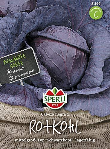 Sperli Gemüsesamen Rotkohl Cabeza negra Schwarzkopf 2, grün