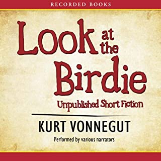 Look at the Birdie audiobook cover art