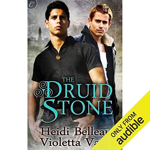 The Druid Stone audiobook cover art