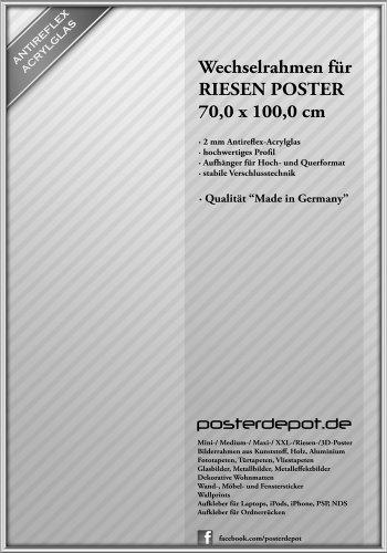 Bilderrahmen f. Riesen Poster - Größe 70 x 100 cm, Silber - Antireflex Acrylglas