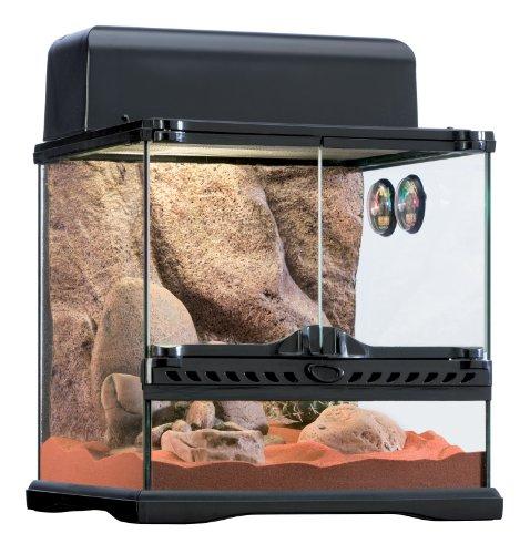 Exo Terra Desert Habitat Kit, Reptile Terrarium Starter Kit, Small, PT2650A1