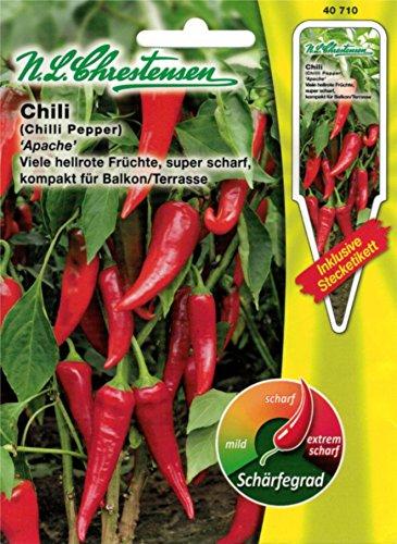 Chrestensen Gewürzpaprika / Chili 'Apache' Saatgut Samen