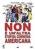 Non E' Un'Altra Stupida Commedia Americana...