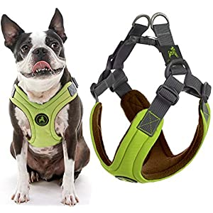 Gooby Dog Harness – Green, Small – Escape Free Memory Foam Step-in Small Dog Harness – Perfect on The Go Four-Point Adjustable – No Pull Harness for Small Dogs or Cat Harness