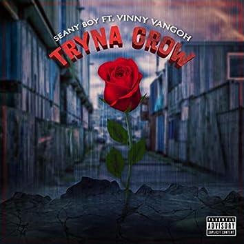 Tryna Grow (feat. Vinny Vangoh)