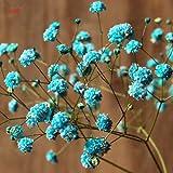 100 ramos de flores naturales de Gypsophila secas, aliento de bebé, arreglos de mesa, decoraciones de boda: 8