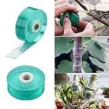 ANCIRS Lot de 2 Rubans de greffage pour Plantes d'arbre fruitier 20 mm de Large, barrière d'humidité biodégradable, Film Transparent Extensible