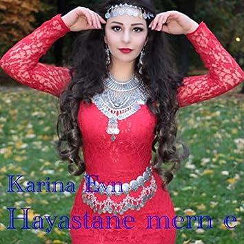 Haystane Merne