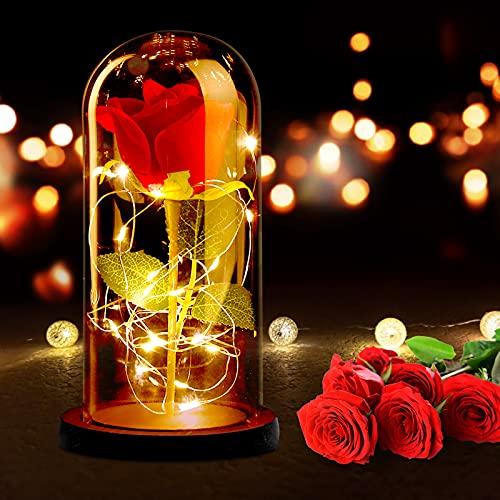 Rosa Eterna, RANJIMA La Bella e La Bestia Rose Incantate, Rosa Eterna Cupola di Vetro con Base Pino Luci LED Lampada Magici Decorazioni per Festa della Papà Compleanno Anniversario di Matrimonio