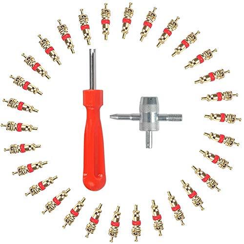 Reifenventil Kern Werkzeug Set, Reifenventilentferner Ventilausdreher mit Reifenventil Kernentferner 4-in-1Einzelkopf Reifenventil Einsatz Entferner, idee für Autoreifen Fahrrad Motorrad Reparatur