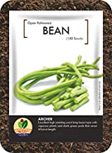GroBro Beans Archer - 1 Pack (1x150 seed) - Yard Long Bean - OP Seed