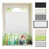Atlaz Easyfix Plissee Rollo Raffrollo ohne Bohren Klemmfix für Fenster 65x100cm (BxH) Weiß Plisseerollo Jalousie Sonnenschutzrollo Fensterrollo mitKlemmträger für Fenster und Tür