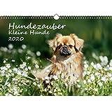 Hundezauber Kleine Hunde DIN A3 Kalender 2020 Welpen und kleine Hunde - Seelenzauber