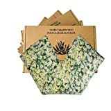 Sacco semi per microonde, sacco termico con fodera lavabile 100% cotone, camomilla naturale e grano (48 x 15). Cuscino rilassante per cervicale e coliche. Ritenzione di freddo e calore (camomilla)