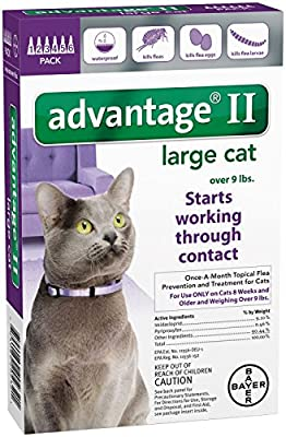 Advantage II Large Cat 6Pack