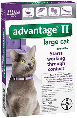 Advantage II Large Cat 6Pack