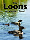 The Loons On Golden Pond