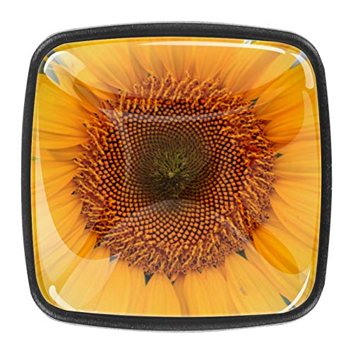 4 pomos de gabinete de cocina sólidos para cajones cuadrados, tiradores de flores de girasol amarillo