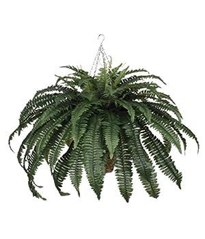 Best cheap artificial ferns Reviews