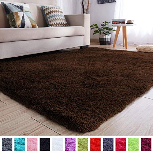 PAGISOFE Brown Fluffy Shag Area Rugs for Bedroom 3x5, Soft Fuzzy Shaggy Rugs for Girls Bedroom Kids Room Carpet Furry Throw Dorm Rug
