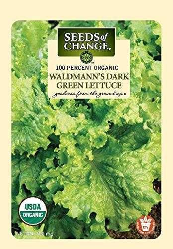 Seeds of Change 5785 Waldmann's Lettuce, Green