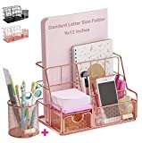 Orgowise Mesh Desk Organizers and Accessories Set. Rose Gold Desktop Organizer with Pen Holder and Paper File Organizer for Real Desk Organization. Cute Office Supplies Storage for Kids and Adults