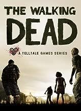 The Walking Dead [Online Game Code]