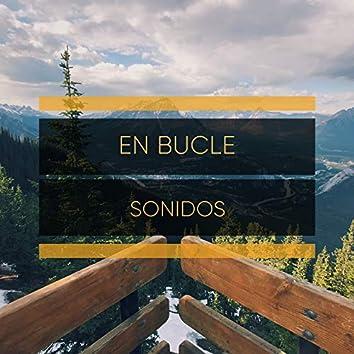 # 1 Album: En Bucle Sonidos