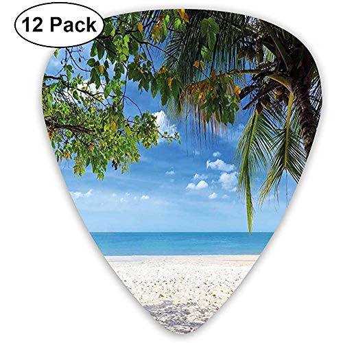 Guitar Picks 12-Pack, Tropical Beach Ocean Behind Palm Tree Caribbean Exotic Holiday Image